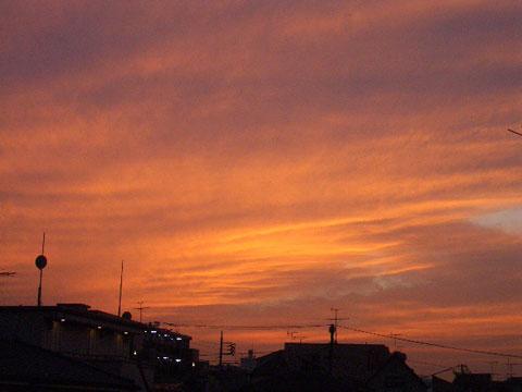 10.11.14yuyake_3774.jpg