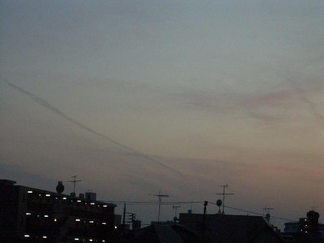 2008.3.17 101.JPG