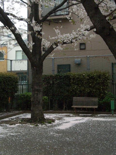 2008.4-10 053.JPG