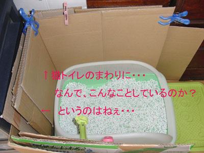 mi-yan-toire2010-11-23_3801.jpg