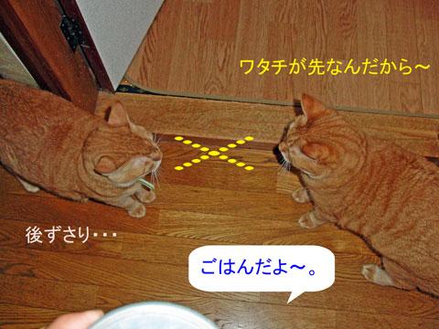 momo-tyako-07-08_2605.jpg